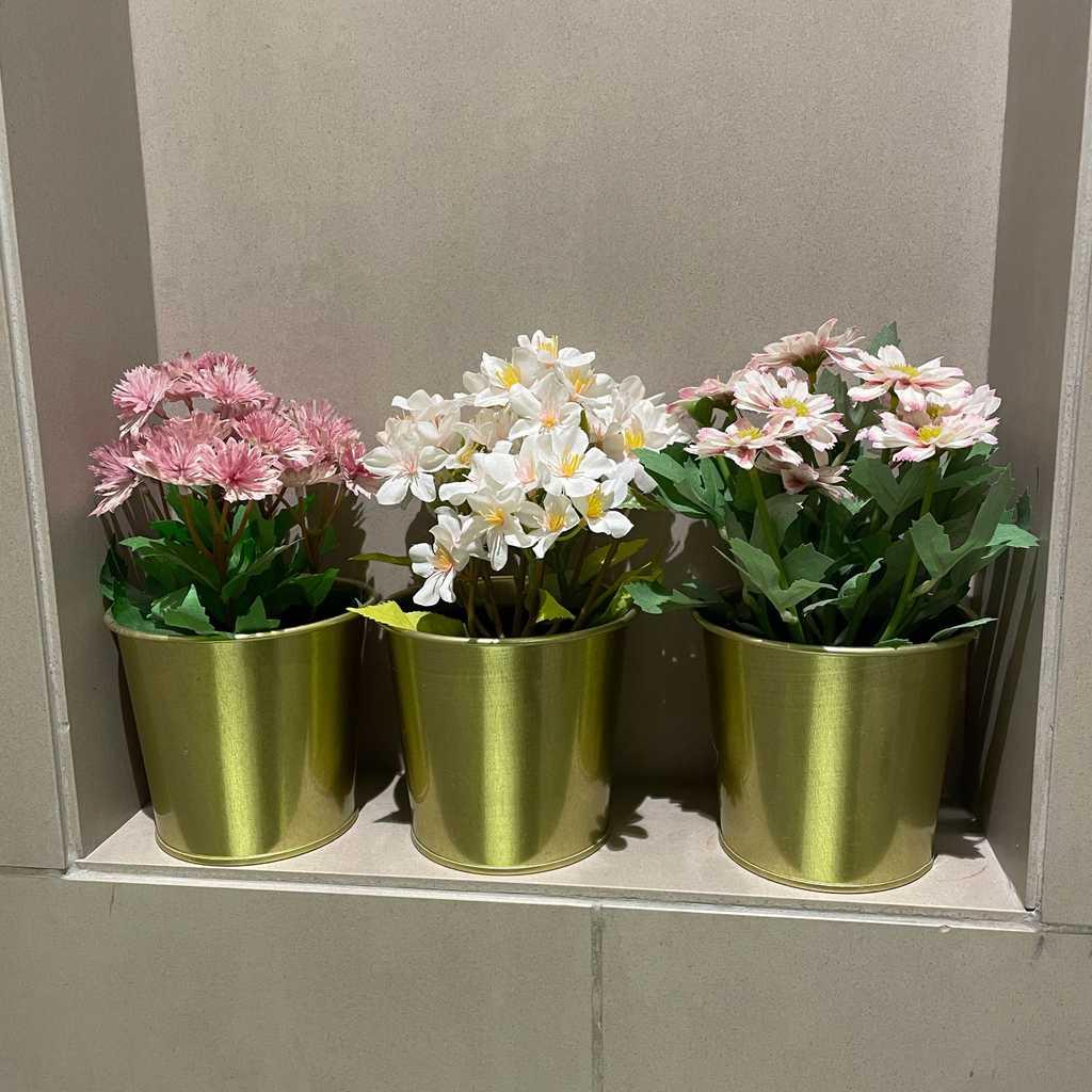 IKEA plants with pots