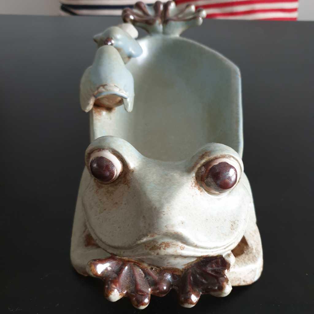 The 'Kissing Frog' Bowl/Planter